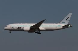 磐城さんが、成田国際空港で撮影したZIPAIR 787-8 Dreamlinerの航空フォト(飛行機 写真・画像)