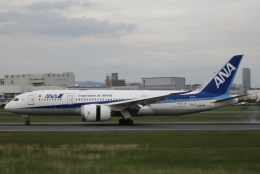 sakura saidaさんが、伊丹空港で撮影した全日空 787-8 Dreamlinerの航空フォト(飛行機 写真・画像)