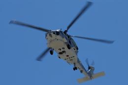 航空フォト:8299 海上自衛隊 SH-60J