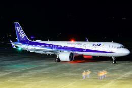 ズイ₍₍ง˘ω˘ว⁾⁾ズイさんが、鹿児島空港で撮影した全日空 A321-272Nの航空フォト(飛行機 写真・画像)