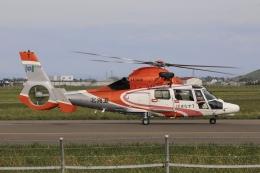Hii82さんが、札幌飛行場で撮影した北海道防災航空隊 AS365N3 Dauphin 2の航空フォト(飛行機 写真・画像)