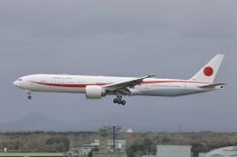 Hii82さんが、千歳基地で撮影した航空自衛隊 777-3SB/ERの航空フォト(飛行機 写真・画像)