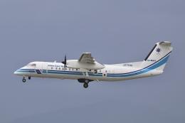 Hii82さんが、千歳基地で撮影した海上保安庁 DHC-8-315 Dash 8の航空フォト(飛行機 写真・画像)