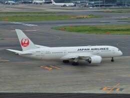 Smyth Newmanさんが、羽田空港で撮影した日本航空 787-8 Dreamlinerの航空フォト(飛行機 写真・画像)