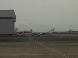 Smyth Newmanさんが、羽田空港で撮影した日本航空 767-346/ERの航空フォト(飛行機 写真・画像)