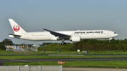 パンダさんが、成田国際空港で撮影した日本航空 777-346/ERの航空フォト(飛行機 写真・画像)