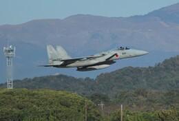 こびとさんさんが、築城基地で撮影した航空自衛隊 F-15J Eagleの航空フォト(飛行機 写真・画像)