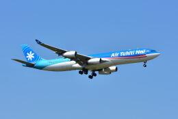 ポン太さんが、成田国際空港で撮影したエア・タヒチ・ヌイ A340-313Xの航空フォト(飛行機 写真・画像)