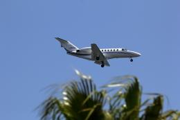 VFRさんが、羽田空港で撮影したオートパンサー 525A Citation CJ2の航空フォト(飛行機 写真・画像)