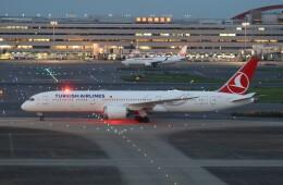サリーちゃんのパパさんが、羽田空港で撮影したターキッシュ・エアラインズ 787-9の航空フォト(飛行機 写真・画像)