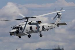 EXIA01さんが、名古屋飛行場で撮影した海上自衛隊の航空フォト(飛行機 写真・画像)