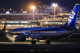 rokko2000さんが、伊丹空港で撮影した全日空 737-881の航空フォト(飛行機 写真・画像)