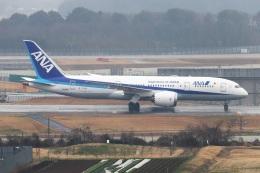 kan787allさんが、成田国際空港で撮影した全日空 787-8 Dreamlinerの航空フォト(飛行機 写真・画像)