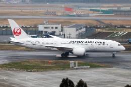 kan787allさんが、成田国際空港で撮影した日本航空 787-8 Dreamlinerの航空フォト(飛行機 写真・画像)