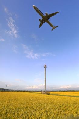 トリトンブルーSHIROさんが、庄内空港で撮影した全日空 A321-272Nの航空フォト(飛行機 写真・画像)