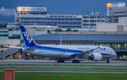 rokko2000さんが、伊丹空港で撮影した全日空 787-9の航空フォト(飛行機 写真・画像)