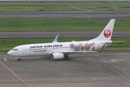 やまけんさんが、羽田空港で撮影した日本航空 737-846の航空フォト(飛行機 写真・画像)