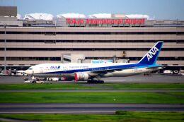 まいけるさんが、羽田空港で撮影した全日空 777-281/ERの航空フォト(飛行機 写真・画像)