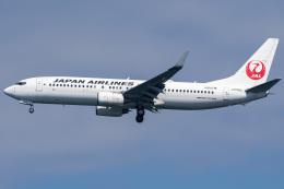 Tatsuya.Kさんが、羽田空港で撮影した日本航空 737-846の航空フォト(飛行機 写真・画像)