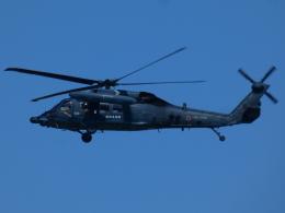 宮城の航空ファンさんが、仙台空港で撮影した航空自衛隊 UH-60Jの航空フォト(飛行機 写真・画像)