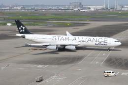 サリーちゃんのパパさんが、羽田空港で撮影したルフトハンザドイツ航空 A340-313Xの航空フォト(飛行機 写真・画像)