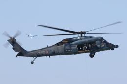 ゴンタさんが、新潟空港で撮影した航空自衛隊 UH-60Jの航空フォト(飛行機 写真・画像)