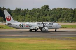 じじいさんが、青森空港で撮影した日本航空 737-846の航空フォト(飛行機 写真・画像)