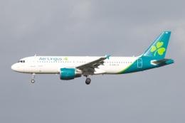 S.Hayashiさんが、ロンドン・ガトウィック空港で撮影したエア・リンガス A320-214の航空フォト(飛行機 写真・画像)