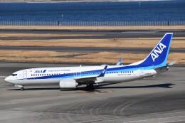 PIRORINGさんが、羽田空港で撮影した全日空 737-8ALの航空フォト(飛行機 写真・画像)