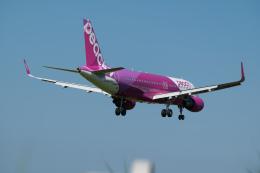 マックパパさんが、宮崎空港で撮影したピーチ A320-214の航空フォト(飛行機 写真・画像)
