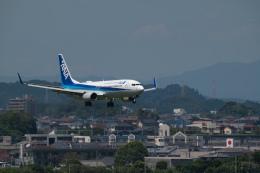 マックパパさんが、宮崎空港で撮影した全日空 737-881の航空フォト(飛行機 写真・画像)