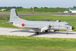 Tomo-Papaさんが、入間飛行場で撮影した航空自衛隊 YS-11A-402EBの航空フォト(飛行機 写真・画像)