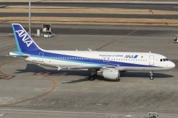 ドガースさんが、羽田空港で撮影した全日空 A320-211の航空フォト(飛行機 写真・画像)
