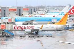 S.Hayashiさんが、アムステルダム・スキポール国際空港で撮影したペガサス・エアラインズ 737-8H6の航空フォト(飛行機 写真・画像)