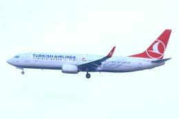 S.Hayashiさんが、ロンドン・ガトウィック空港で撮影したターキッシュ・エアラインズ 737-8F2の航空フォト(飛行機 写真・画像)