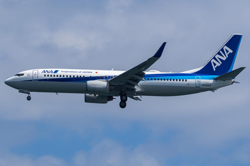 Tatsuya.Kさんの全日空 Boeing 737-800 (JA62AN) 航空フォト