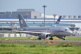 LEGACY-747さんが、成田国際空港で撮影したチェコ空軍 A319-115CJの航空フォト(飛行機 写真・画像)
