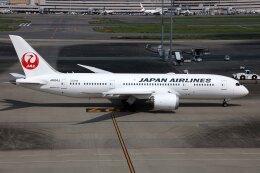 sin747さんが、羽田空港で撮影した日本航空 787-8 Dreamlinerの航空フォト(飛行機 写真・画像)