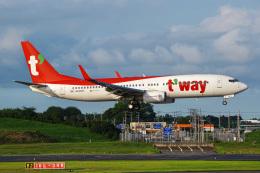 Tatsuya.Kさんが、成田国際空港で撮影したティーウェイ航空 737-8KNの航空フォト(飛行機 写真・画像)