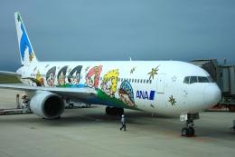 S.Hayashiさんが、広島空港で撮影した全日空 767-381の航空フォト(飛行機 写真・画像)