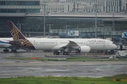 神宮寺ももさんが、羽田空港で撮影したビスタラ 787-9の航空フォト(飛行機 写真・画像)