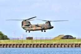 kotaちゃんさんが、木更津飛行場で撮影した陸上自衛隊 CH-47JAの航空フォト(飛行機 写真・画像)