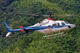 ブルーさんさんが、静岡ヘリポートで撮影した中日本航空 430の航空フォト(飛行機 写真・画像)