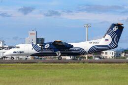 ズイ₍₍ง˘ω˘ว⁾⁾ズイさんが、鹿児島空港で撮影したオーロラ DHC-8-311Q Dash 8の航空フォト(飛行機 写真・画像)