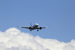 VFRさんが、羽田空港で撮影した全日空 A320-271Nの航空フォト(飛行機 写真・画像)