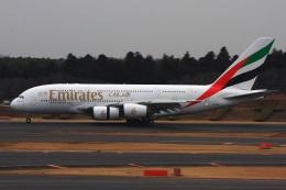 S.Hayashiさんが、成田国際空港で撮影したエミレーツ航空 A380-861の航空フォト(飛行機 写真・画像)