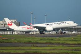 ▲®さんが、羽田空港で撮影した日本航空 A350-941の航空フォト(飛行機 写真・画像)