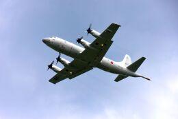 まいけるさんが、厚木飛行場で撮影した海上自衛隊 P-3Cの航空フォト(飛行機 写真・画像)
