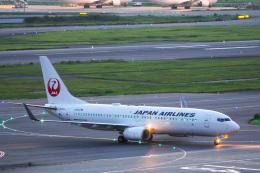 かっちゃん✈︎さんが、羽田空港で撮影した日本航空 737-846の航空フォト(飛行機 写真・画像)