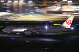 かっちゃん✈︎さんが、羽田空港で撮影した日本航空 787-8 Dreamlinerの航空フォト(飛行機 写真・画像)